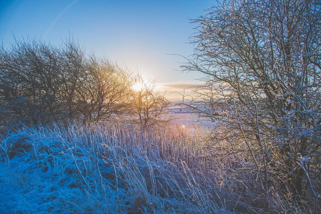 COTSWOLD SNOW-1 low